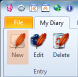 Click at the New Entry button to write a new diary entry
