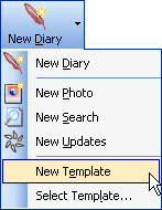 Create a new diary template